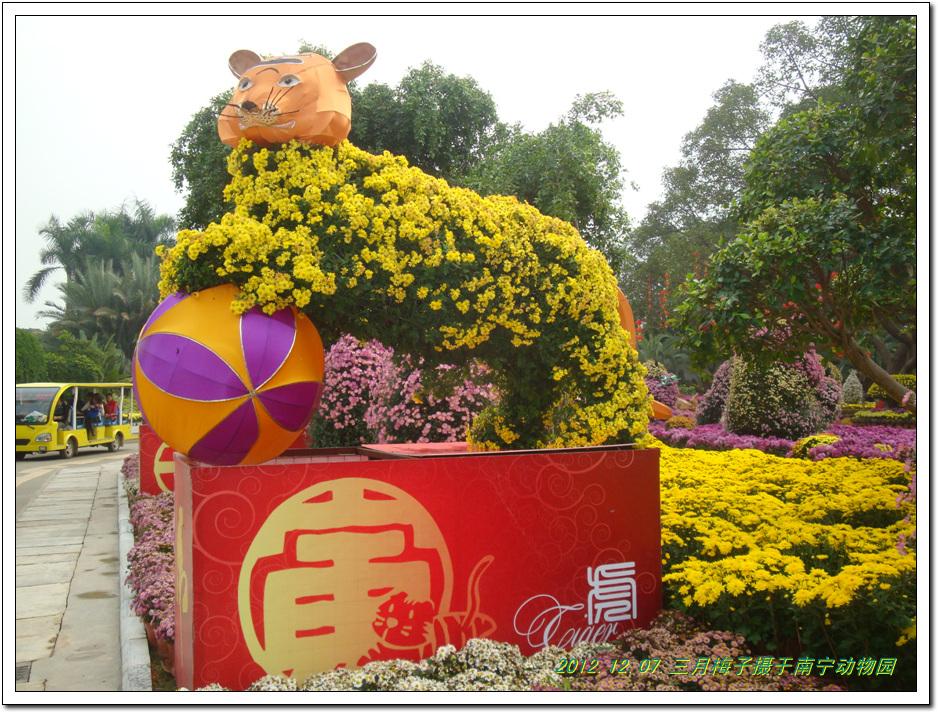 动物园赏菊花(十二生肖造型)